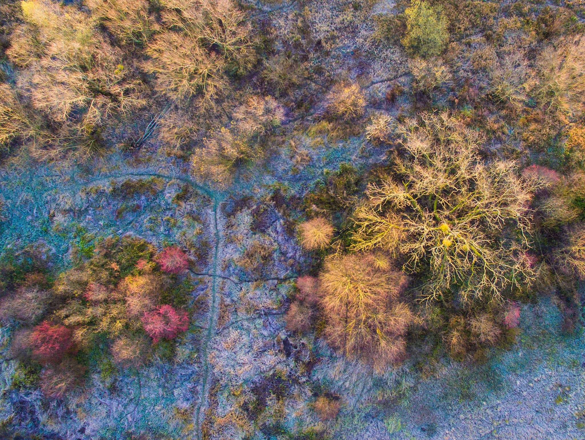 drone photography capture